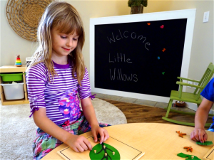 Little Willows Early Learning Childcare Centre